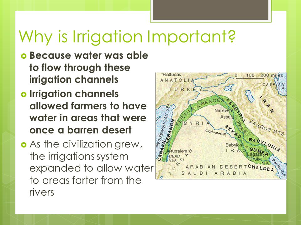 Why is Irrigation Important?  Because water was able to flow through these irrigation channels  Irrigation channels allowed farmers to have water in