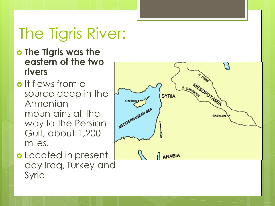 The Tigris River:  The Tigris was the eastern of the two rivers  It flows from a source deep in the Armenian mountains all the way to the Persian Gu