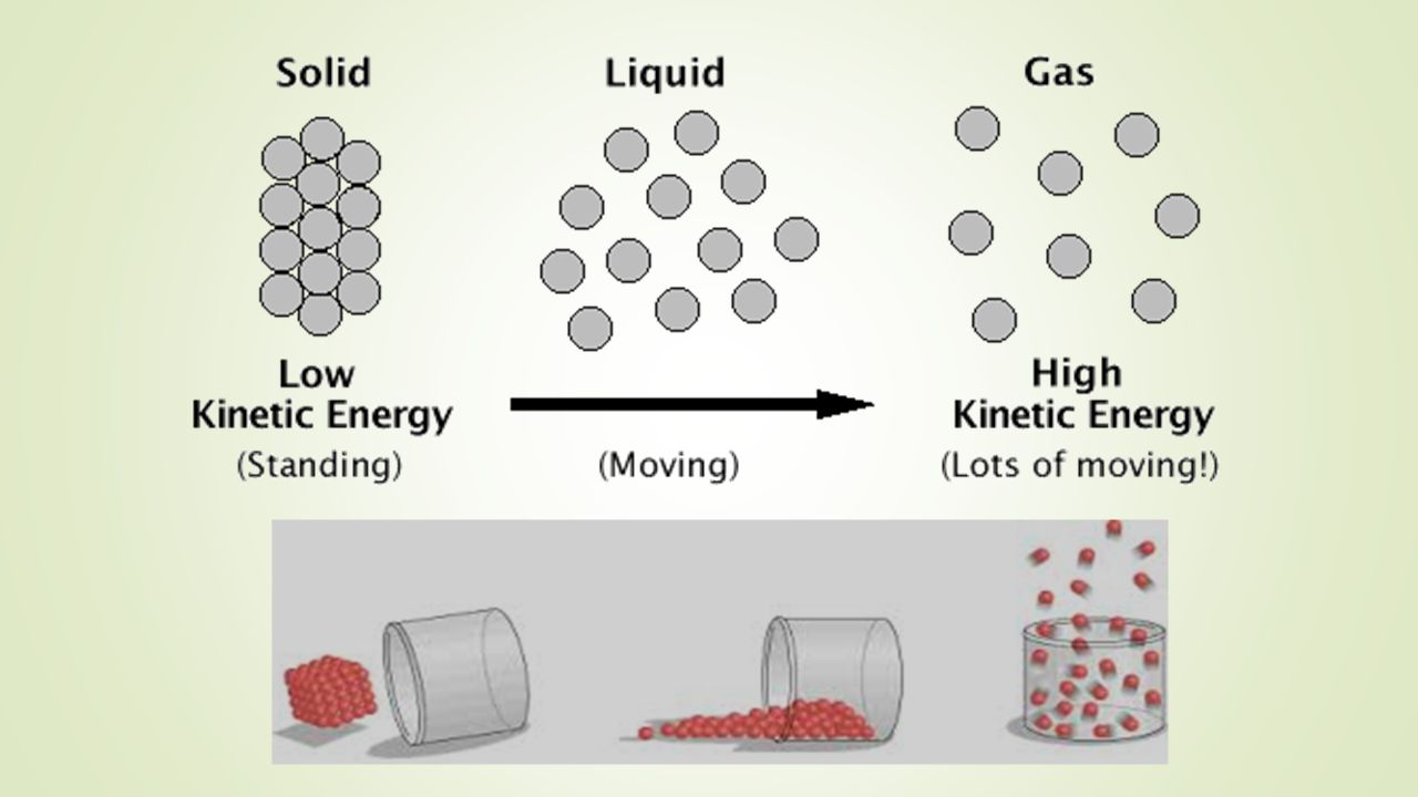 7. What happens to the ice molecules as they change to a liquid?