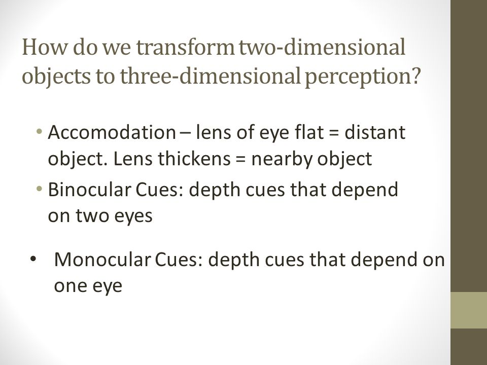 How do we transform two-dimensional objects to three-dimensional perception.