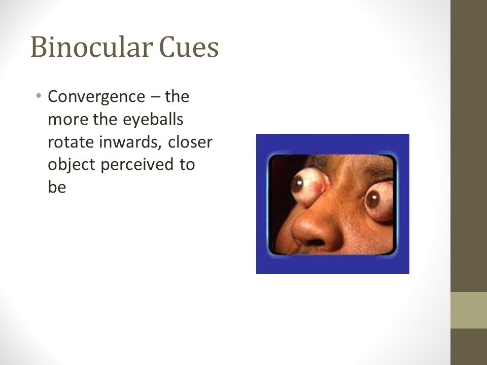 Binocular Cues Convergence – the more the eyeballs rotate inwards, closer object perceived to be