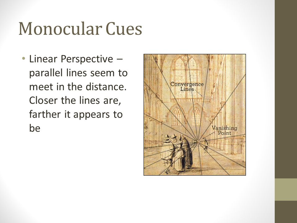 Monocular Cues Linear Perspective – parallel lines seem to meet in the distance.