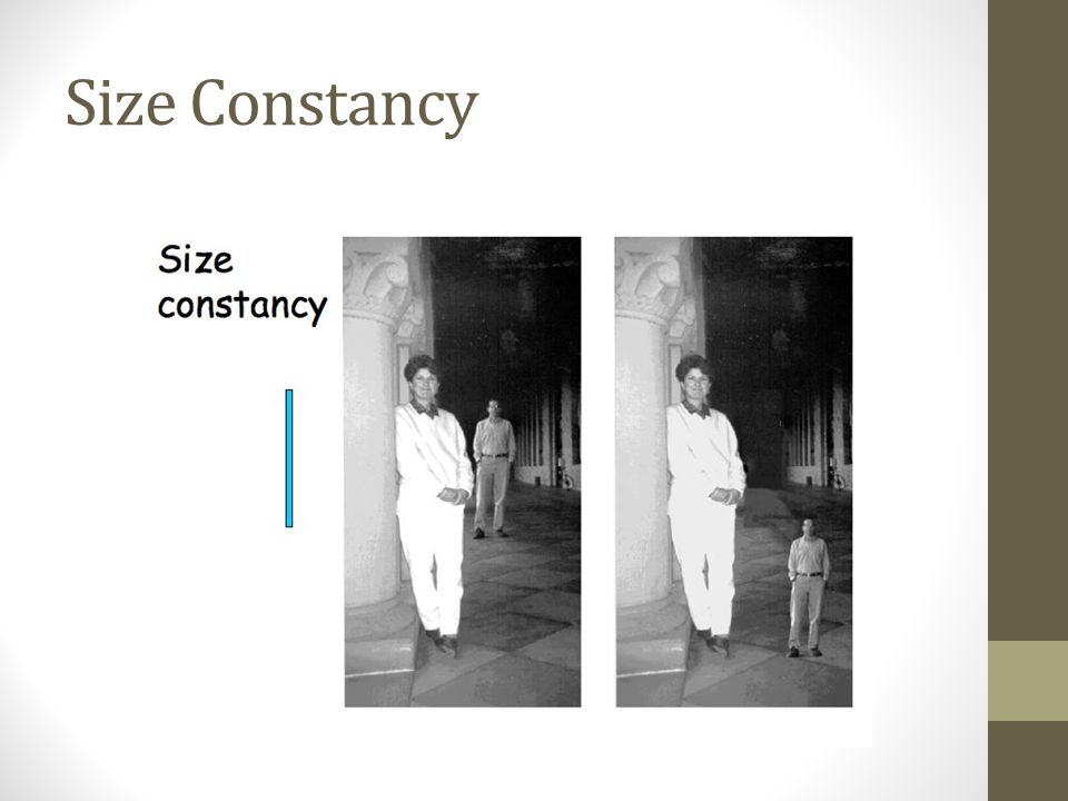 Size Constancy