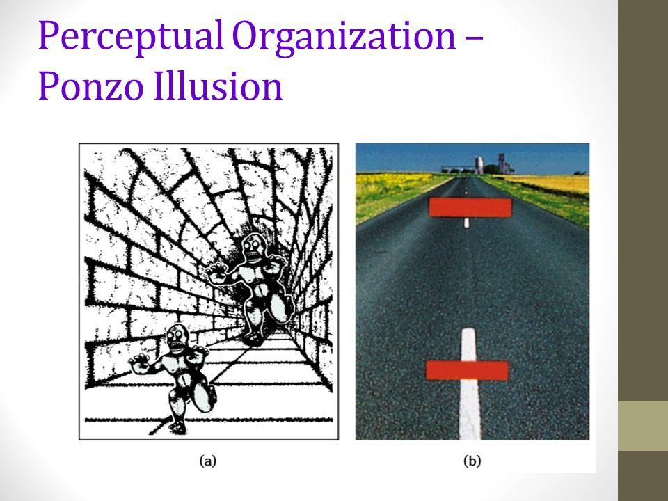 Perceptual Organization – Ponzo Illusion