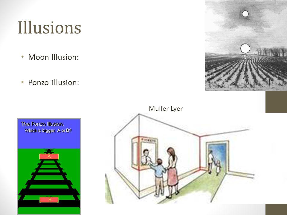 Illusions Moon Illusion: Ponzo illusion: Muller-Lyer