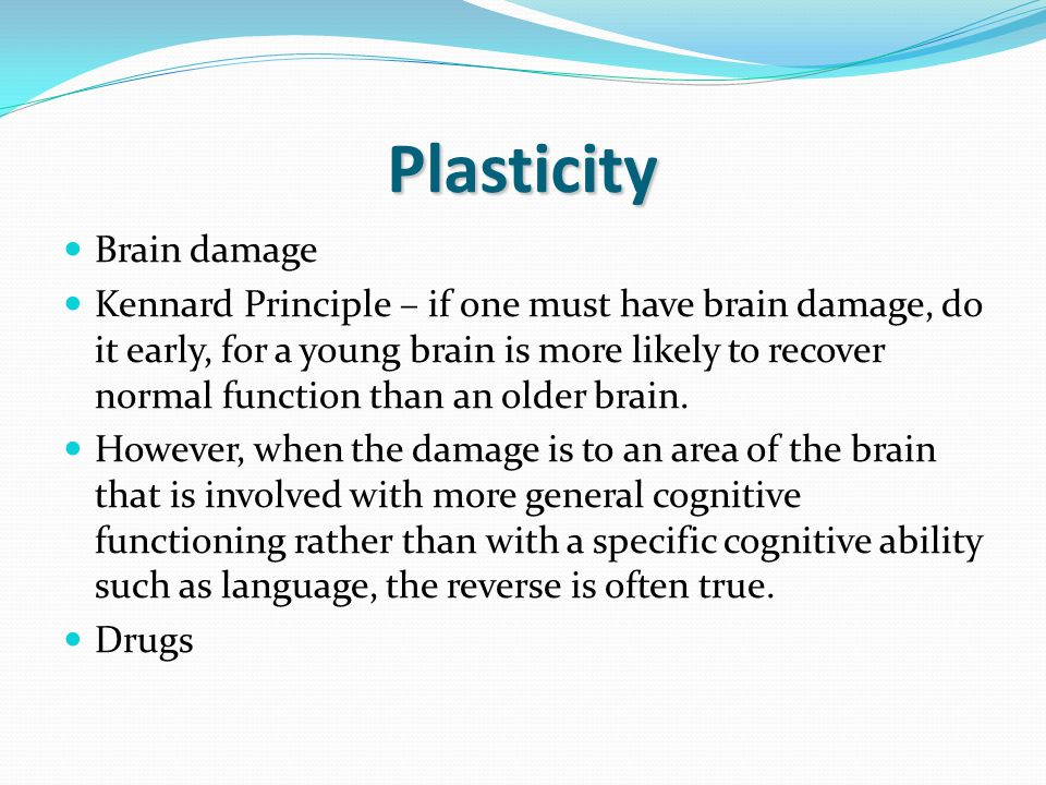 Plasticity Brain damage Kennard Principle – if one must have brain damage, do it early, for a young brain is more likely to recover normal function than an older brain.