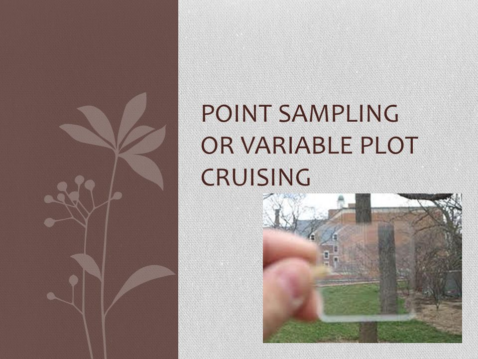 Establishing Plots – Point Sampling A cruise method where the sample trees are selected proportional to their basal area.