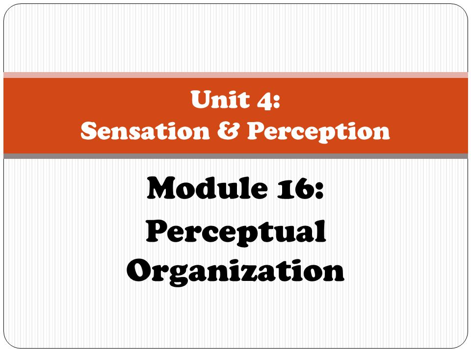 Module 16: Perceptual Organization Unit 4: Sensation & Perception