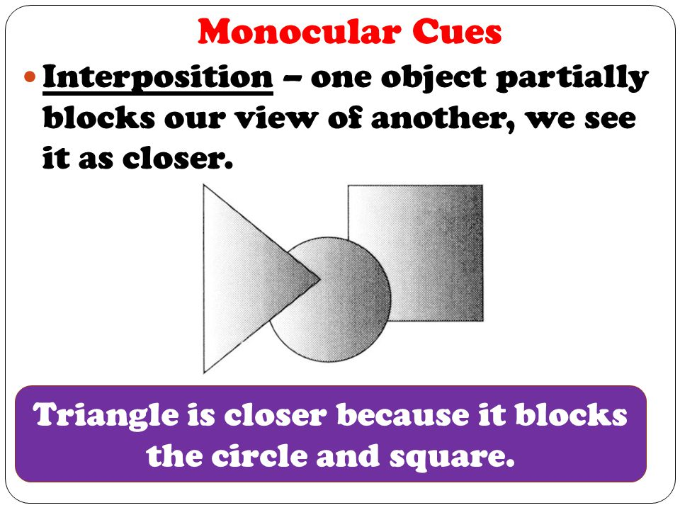 Monocular Cues Interposition – one object partially blocks our view of another, we see it as closer.