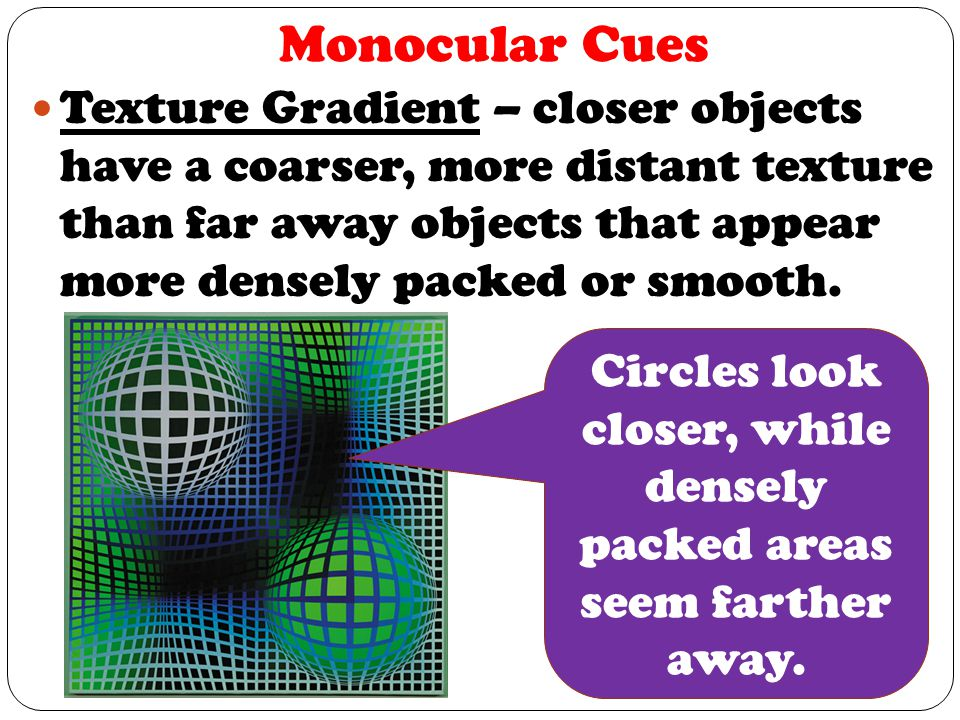 Monocular Cues Texture Gradient – closer objects have a coarser, more distant texture than far away objects that appear more densely packed or smooth.