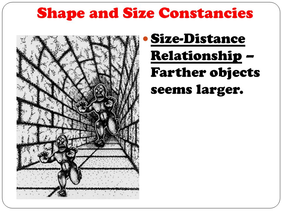 Shape and Size Constancies Size-Distance Relationship – Farther objects seems larger.