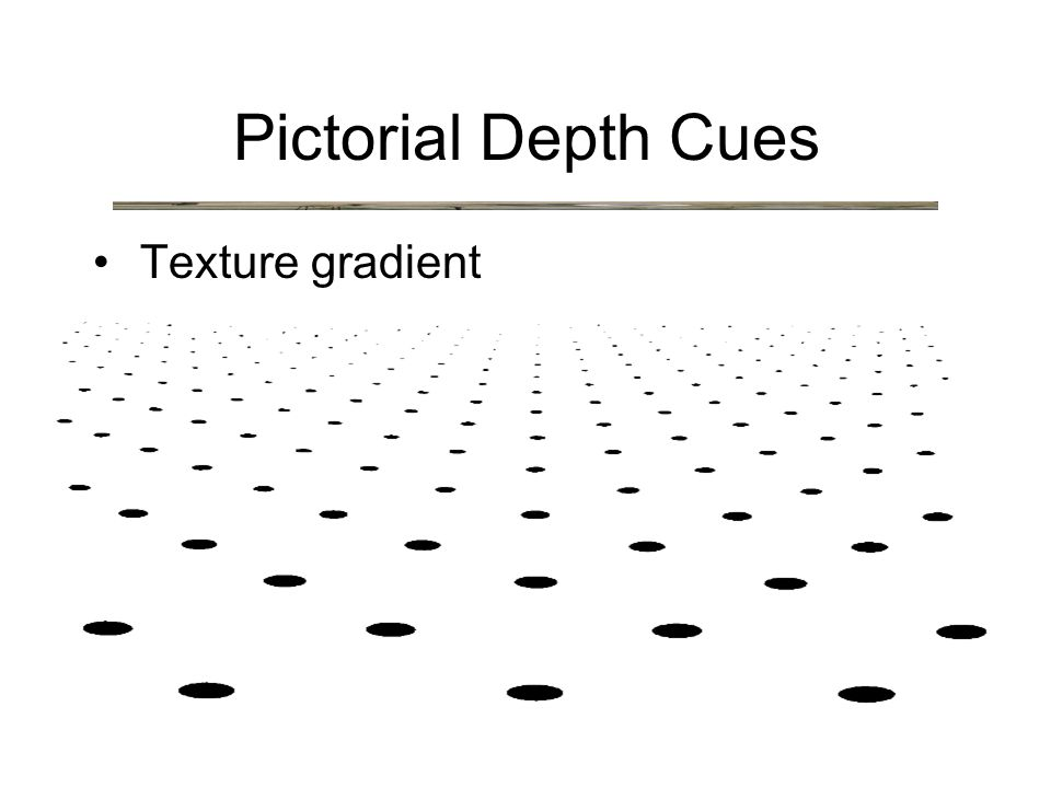 Texture gradient Pictorial Depth Cues