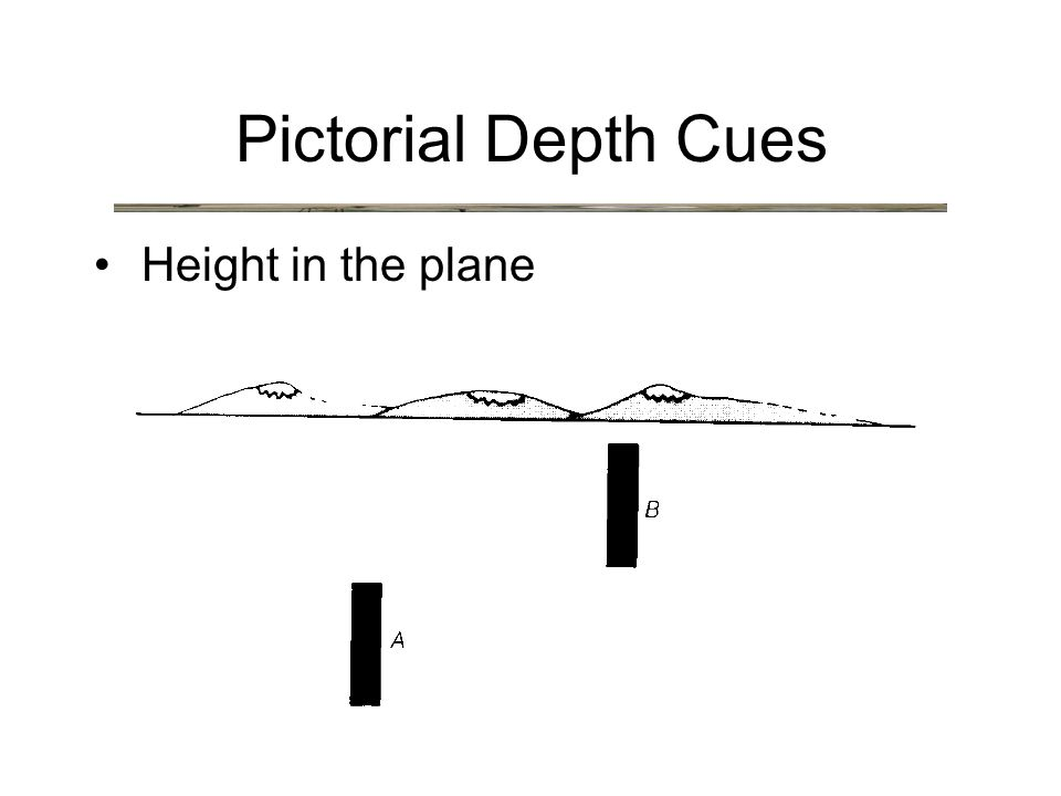Height in the plane Pictorial Depth Cues