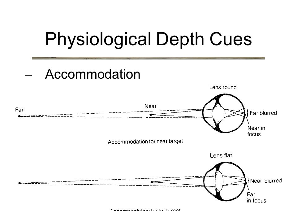 Physiological Depth Cues – Accommodation