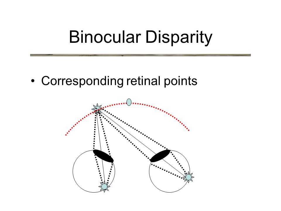 Binocular Disparity Corresponding retinal points