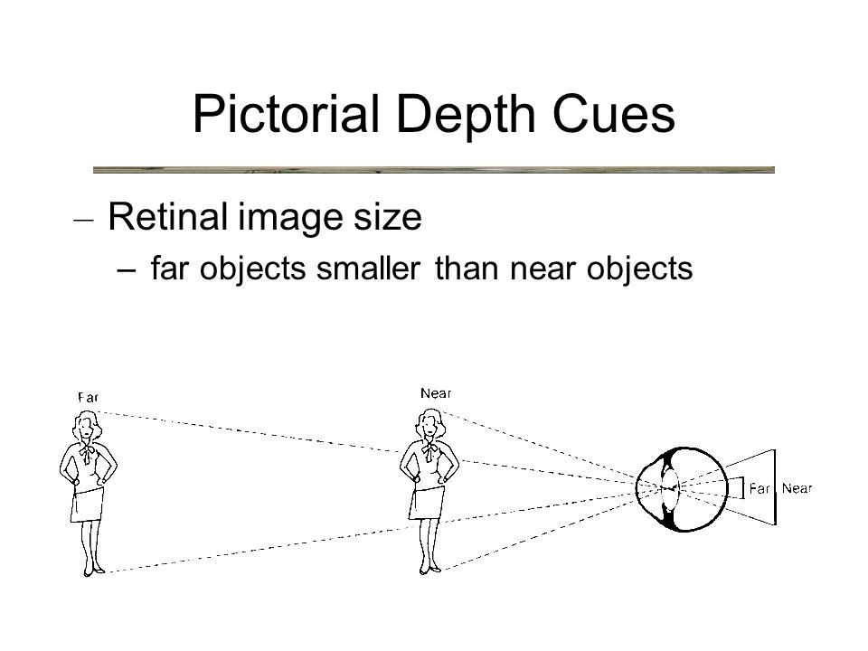 Pictorial Depth Cues – Retinal image size –far objects smaller than near objects