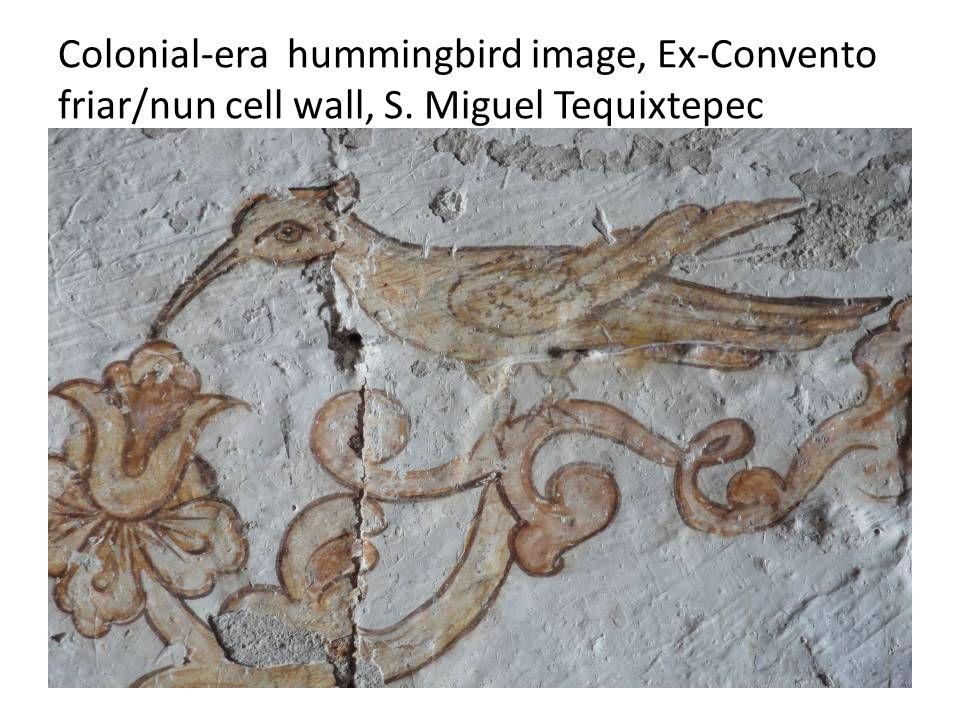 Colonial-era hummingbird image, Ex-Convento friar/nun cell wall, S. Miguel Tequixtepec
