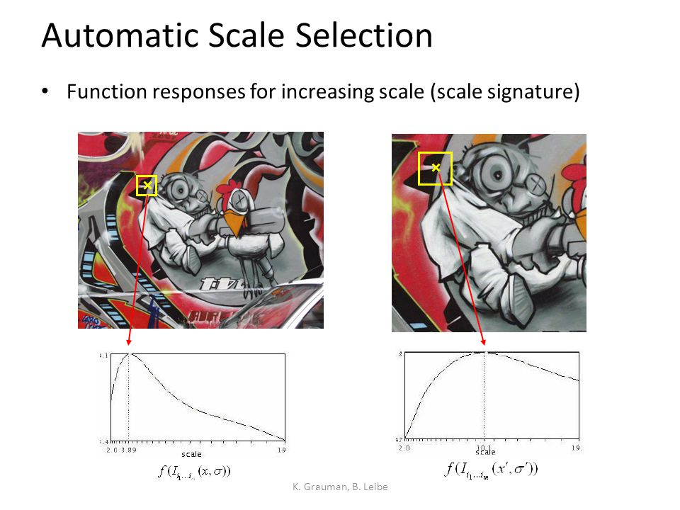 Automatic Scale Selection Function responses for increasing scale (scale signature) K. Grauman, B. Leibe