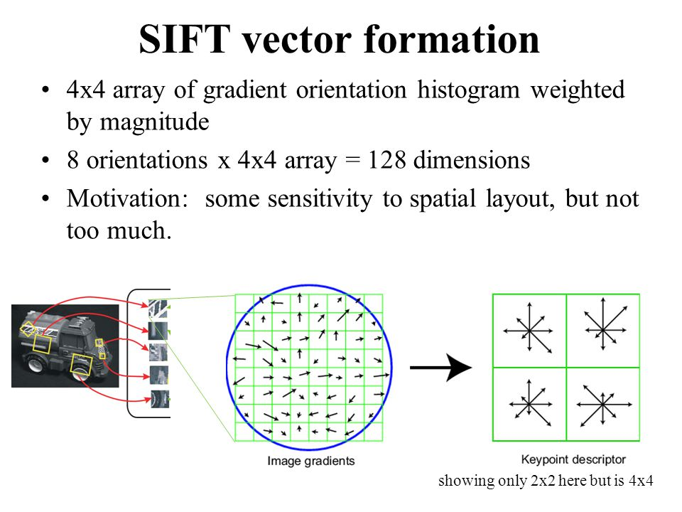 SIFT vector formation 4x4 array of gradient orientation histogram weighted by magnitude 8 orientations x 4x4 array = 128 dimensions Motivation: some s