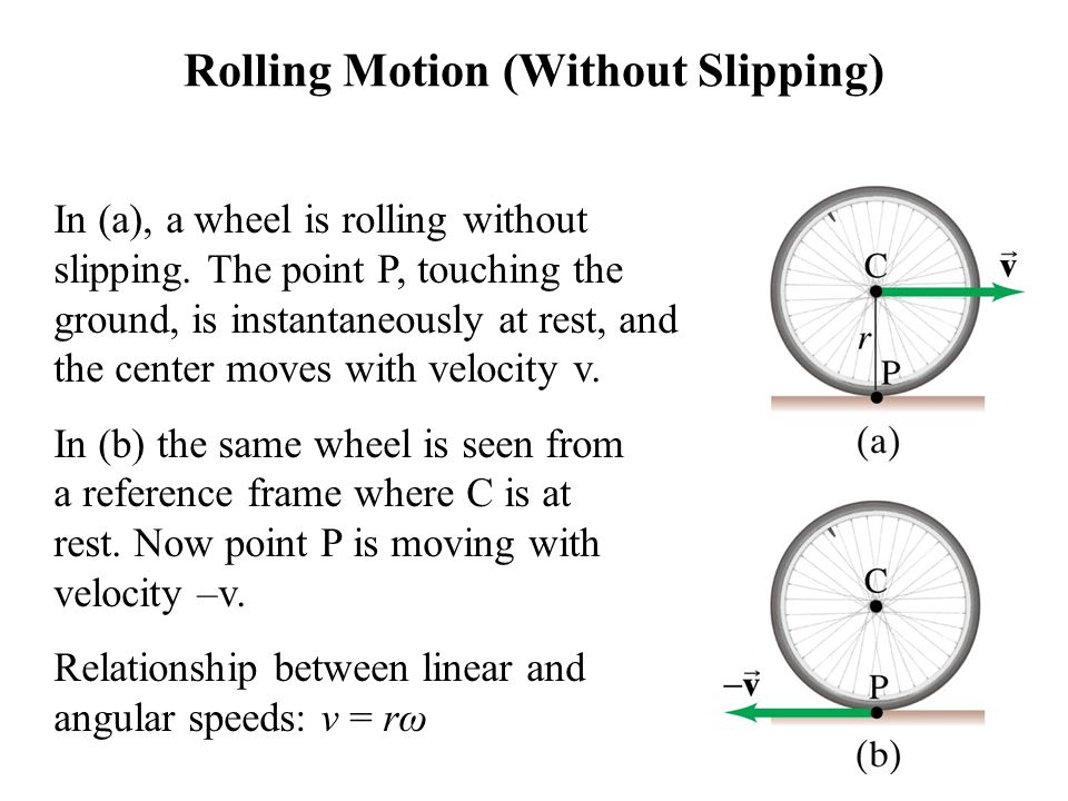 Rolling Motion (Without Slipping) In (a), a wheel is rolling without slipping. The point P, touching the ground, is instantaneously at rest, and the c