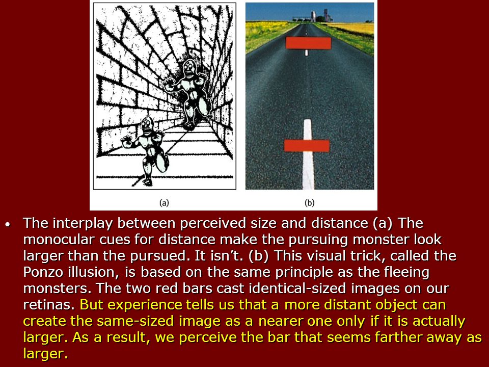 The interplay between perceived size and distance (a) The monocular cues for distance make the pursuing monster look larger than the pursued.
