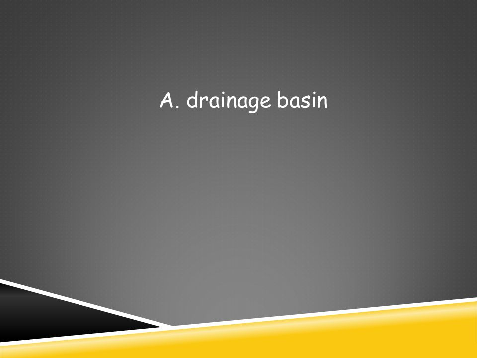 A. drainage basin