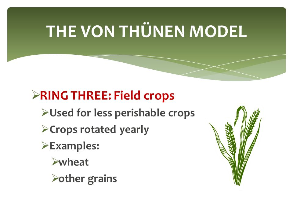  RING THREE: Field crops  Used for less perishable crops  Crops rotated yearly  Examples:  wheat  other grains THE VON THÜNEN MODEL