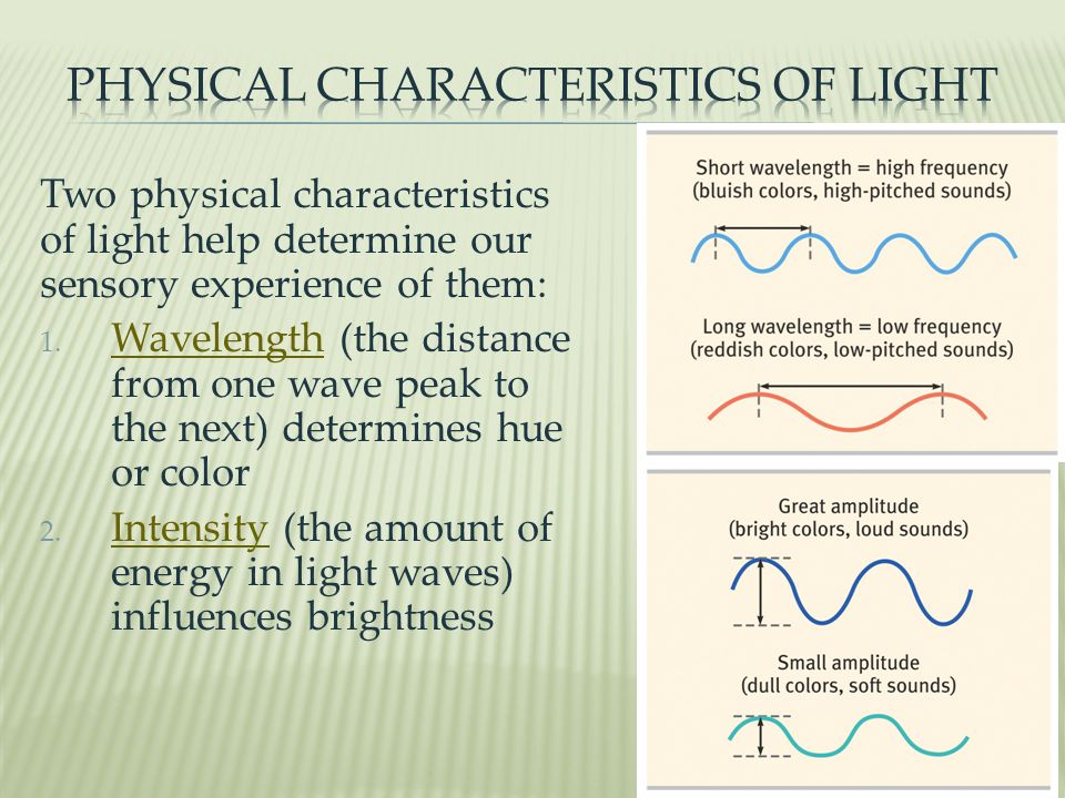 Two physical characteristics of light help determine our sensory experience of them: 1.