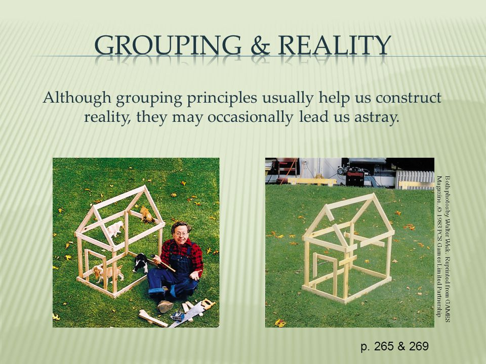 Although grouping principles usually help us construct reality, they may occasionally lead us astray.