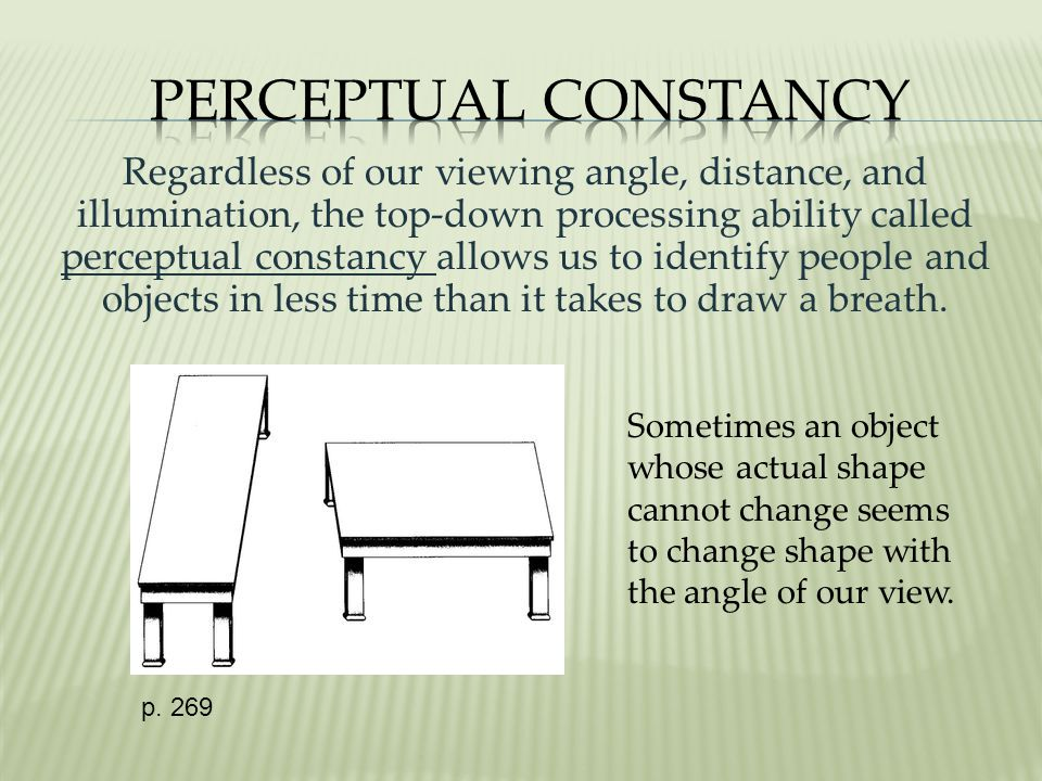 Regardless of our viewing angle, distance, and illumination, the top-down processing ability called perceptual constancy allows us to identify people and objects in less time than it takes to draw a breath.