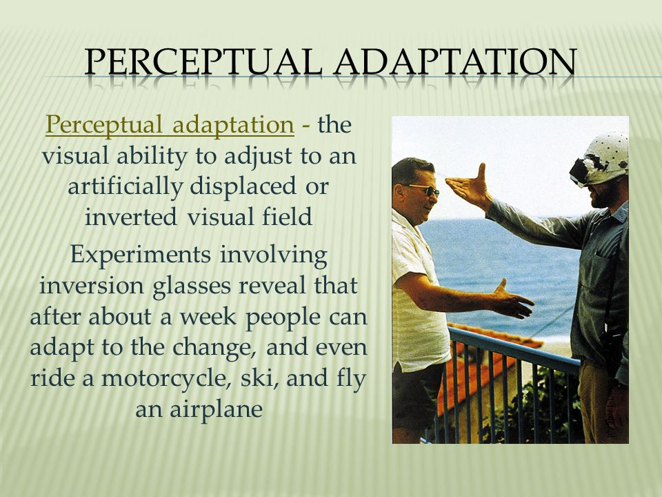 Perceptual adaptation - the visual ability to adjust to an artificially displaced or inverted visual field Experiments involving inversion glasses reveal that after about a week people can adapt to the change, and even ride a motorcycle, ski, and fly an airplane Courtesy of Hubert Dolezal