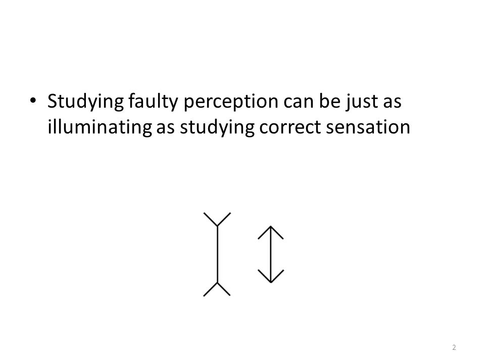 Studying faulty perception can be just as illuminating as studying correct sensation 2