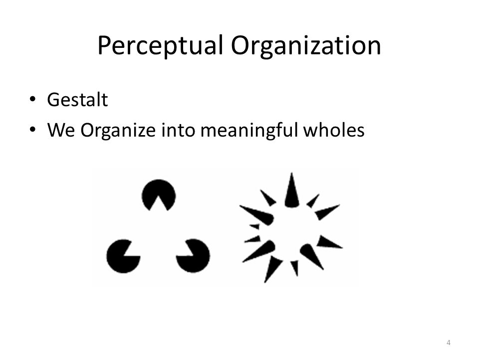 Perceptual Organization Gestalt We Organize into meaningful wholes 4