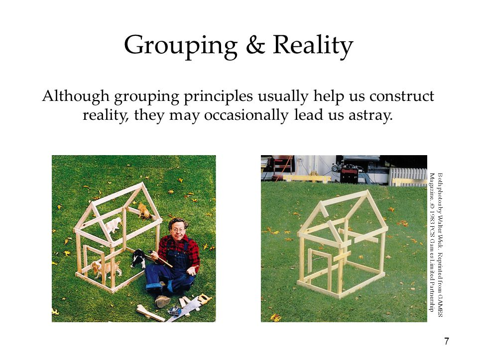 7 Grouping & Reality Although grouping principles usually help us construct reality, they may occasionally lead us astray. Both photos by Walter Wick.