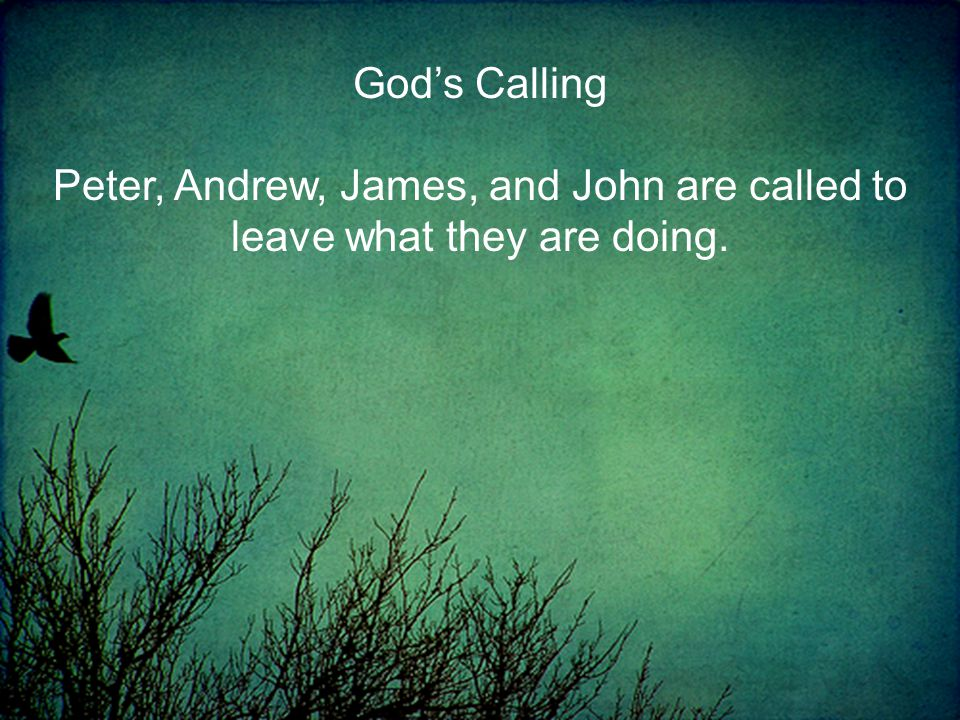Peter, Andrew, James, and John are called to leave what they are doing.