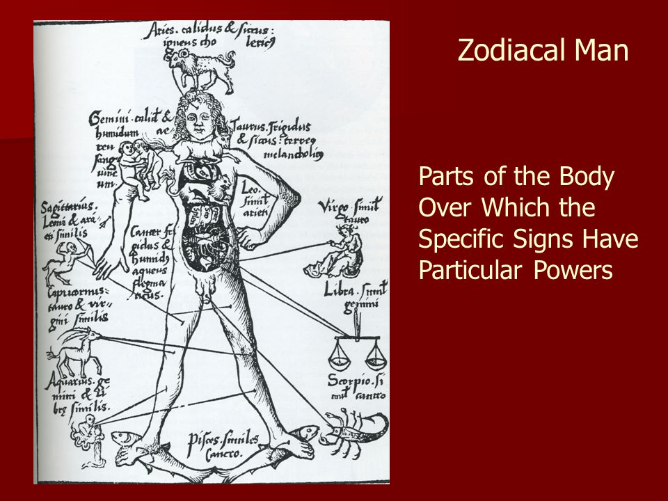 Zodiacal Man Parts of the Body Over Which the Specific Signs Have Particular Powers