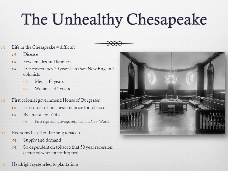 The Unhealthy ChesapeakeThe Unhealthy Chesapeake  Life in the Chesapeake = difficult  Disease  Few females and families  Life expectancy 20 years