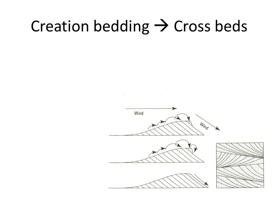 Creation bedding  Cross beds