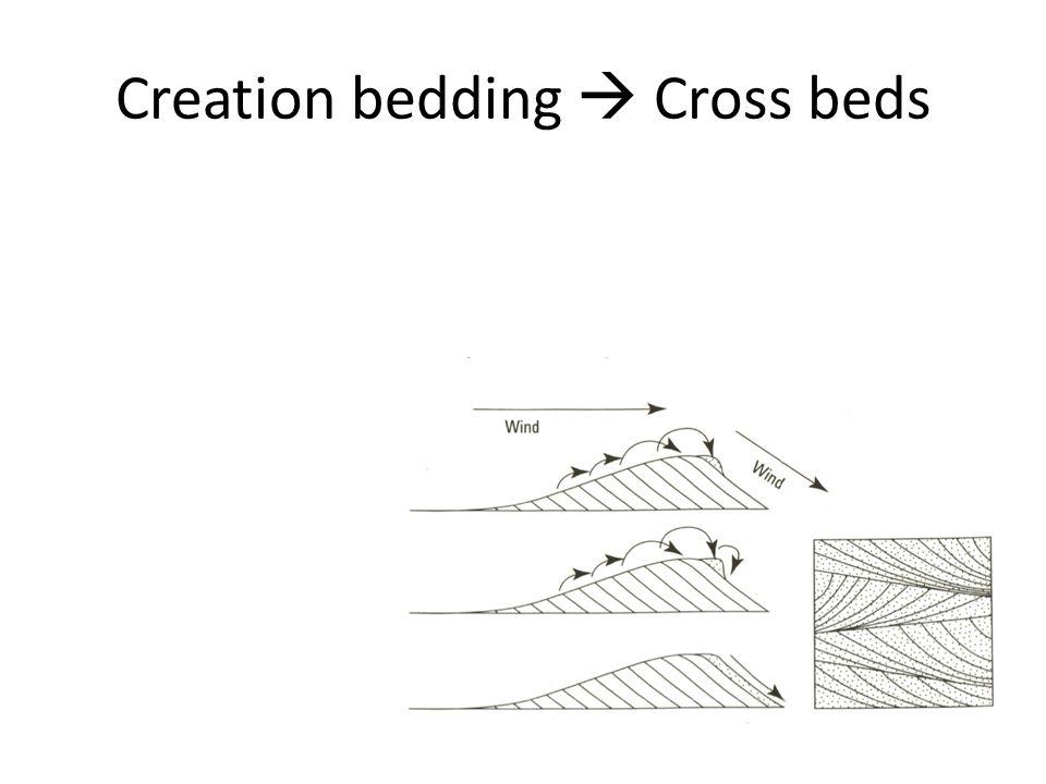 Creation bedding  Cross beds