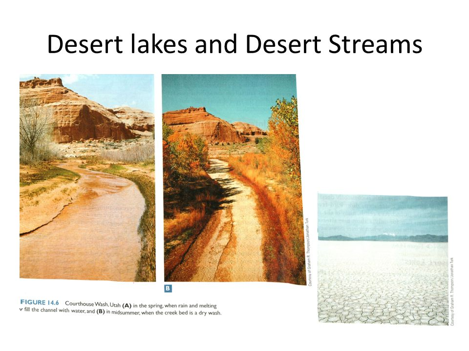 Desert lakes and Desert Streams