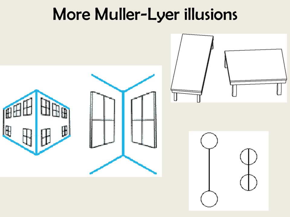 More Muller-Lyer illusions