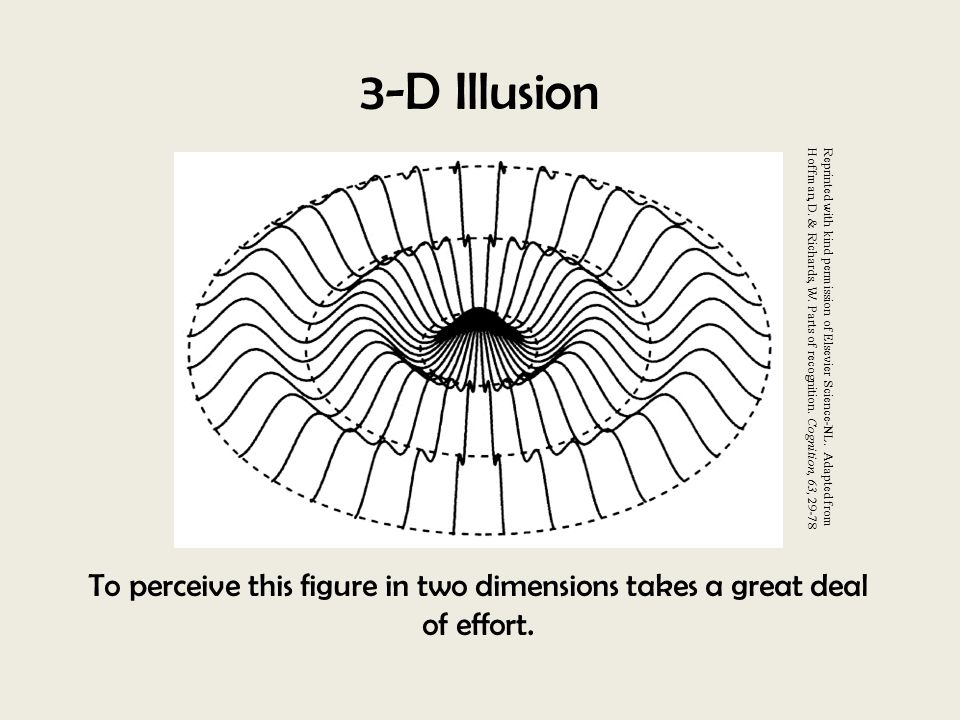 3-D Illusion To perceive this figure in two dimensions takes a great deal of effort. Reprinted with kind permission of Elsevier Science-NL. Adapted fr