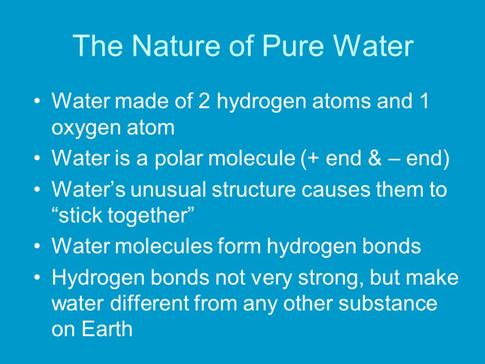 The Nature of Pure Water Water made of 2 hydrogen atoms and 1 oxygen atom Water is a polar molecule (+ end & – end) Water's unusual structure causes them to stick together Water molecules form hydrogen bonds Hydrogen bonds not very strong, but make water different from any other substance on Earth