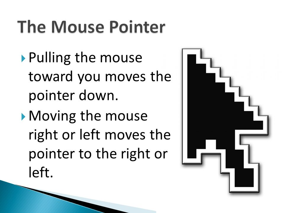  Pulling the mouse toward you moves the pointer down.  Moving the mouse right or left moves the pointer to the right or left.
