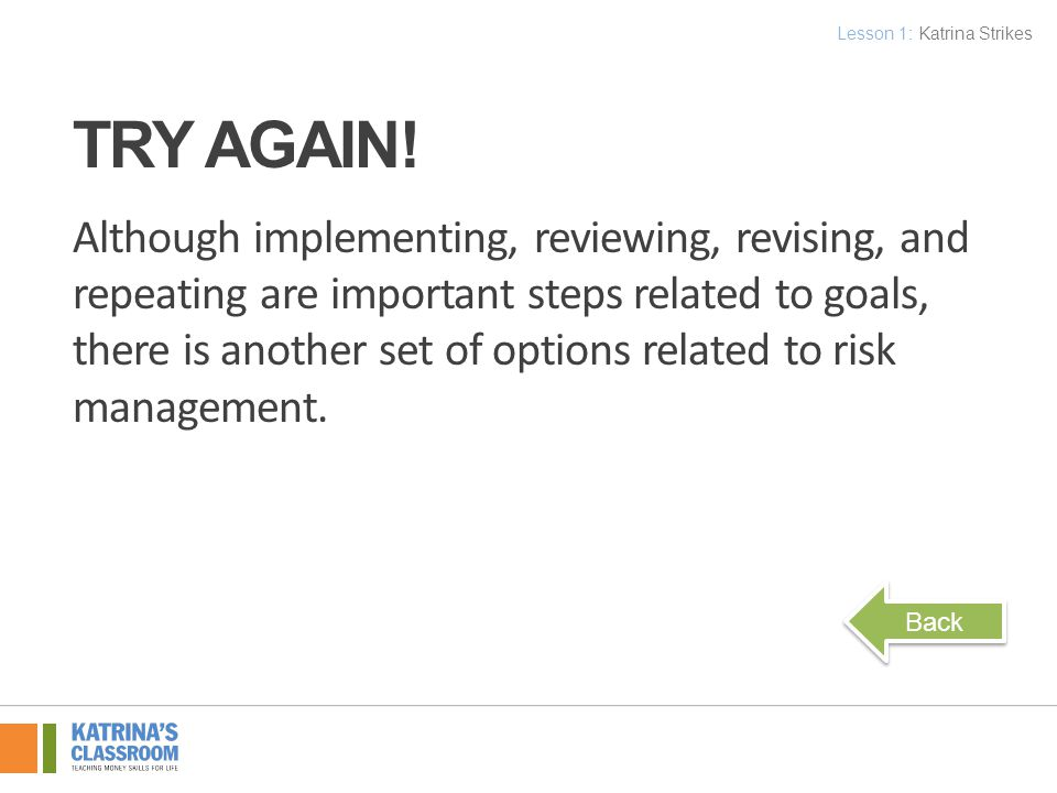 Although implementing, reviewing, revising, and repeating are important steps related to goals, there is another set of options related to risk management.