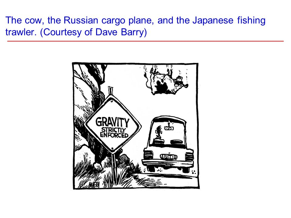 The cow, the Russian cargo plane, and the Japanese fishing trawler. (Courtesy of Dave Barry)