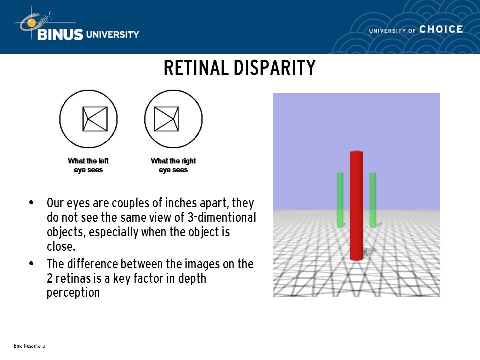 Bina Nusantara RETINAL DISPARITY Our eyes are couples of inches apart, they do not see the same view of 3-dimentional objects, especially when the object is close.