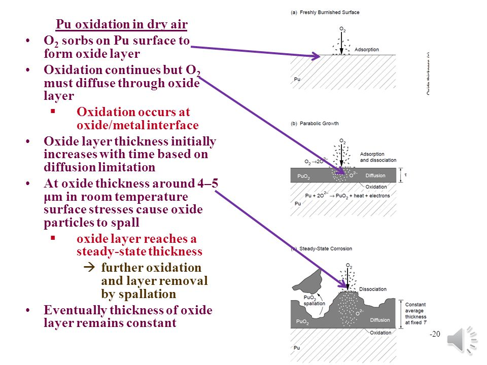 14-19 Pu metal corrosion and oxidation Formation of oxide layer §Can include oxides other than dioxide §Slow oxidation in dry air àGreatly enhanced ox