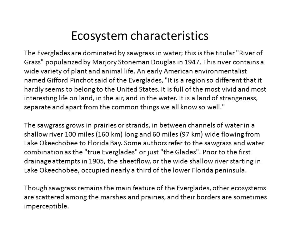 Ecosystem characteristics The Everglades are dominated by sawgrass in water; this is the titular River of Grass popularized by Marjory Stoneman Douglas in 1947.