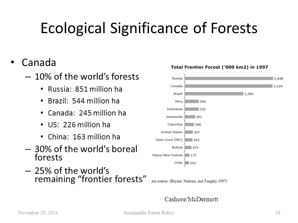 Ecological Significance of Forests Canada – 10% of the world's forests Russia: 851 million ha Brazil: 544 million ha Canada: 245 million ha US: 226 million ha China: 163 million ha – 30% of the world s boreal forests – 25% of the world's remaining frontier forests November 20, 2014Sustainable Forest Policy16 Cashore/McDermott